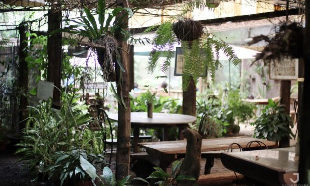 Casa Rap Garden Café: A Fun Dining Experience while in Harmony with Nature